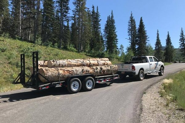 wpc-220-hauling-away-logs-copy